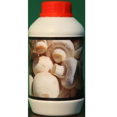 مکمل-تقویتی-پرورش-قارچ-صدفی-دکمه-ای-با-تکنولوژی-نانو-پرورش قارچ خوراکی-parvaresh gharch-پرورش قارچ صدفی-پرورش قارچ دکمه ای-مکمل پرورش قارچ نانو-تقویت کننده قارچ-نانو قارچ-nano gharch