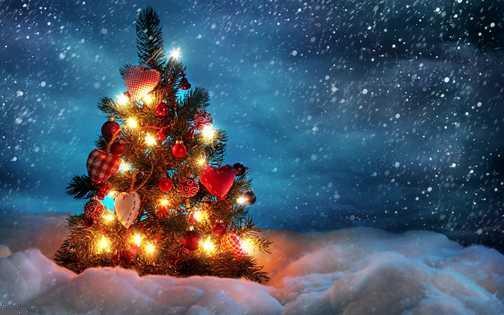 اقتباس کریسمس از شب چله-chrismas-شب یلدا-جشن سال نو مسیحی-Christmas-کلیسا-ایزد میترا-فارسی میتینگ-farsimeeting-شب چله-طولانی ترین شب سال